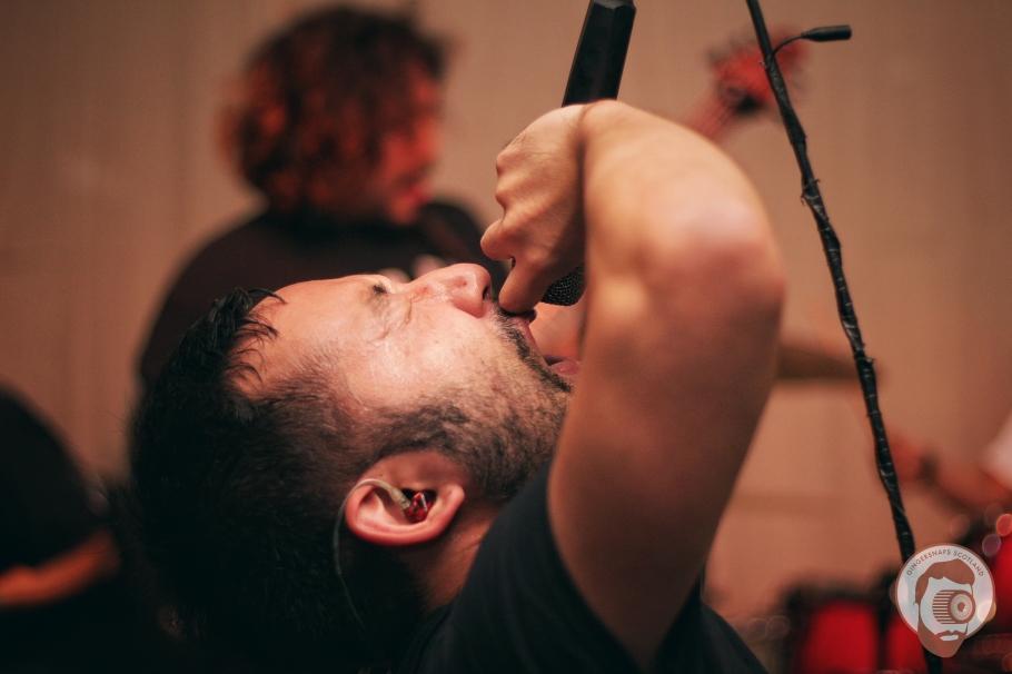 Cyclamen // photograph by Calum McMillan